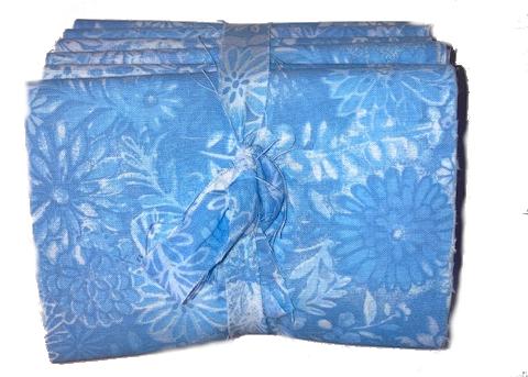 6-pack fl blue